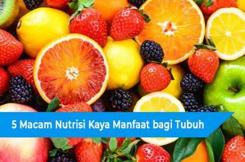 Manfaat Renang Bagi Tubuh Diet Serta Wanita dan Pria