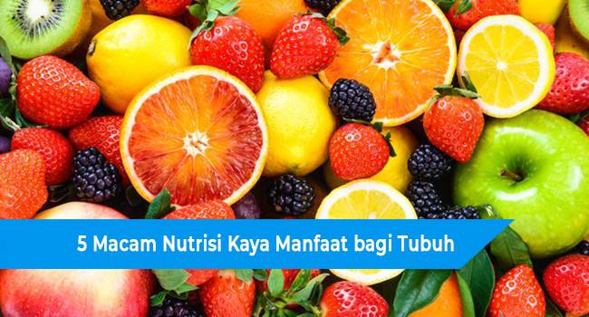 5 Macam Nutrisi Kaya Manfaat bagi Tubuh